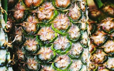 สับปะรด ประโยชน์ 11 อย่างที่คุณต้องร้อง ว้าว!!!